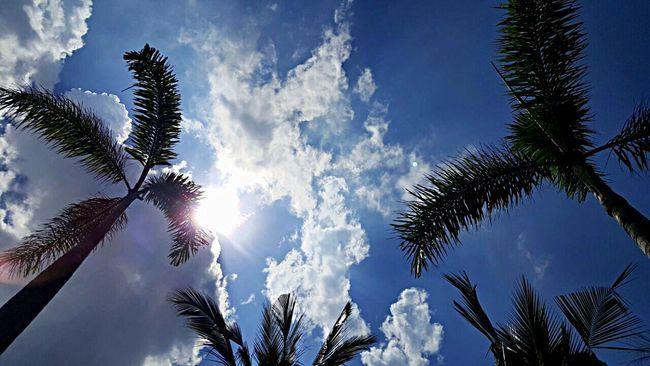 Beautiful Sky Sunday Afternoon Taking Photo Enjoying The Moment Feeling Blessed Hanging Out Enjoying Life Good Weather Sunny Day Summertime