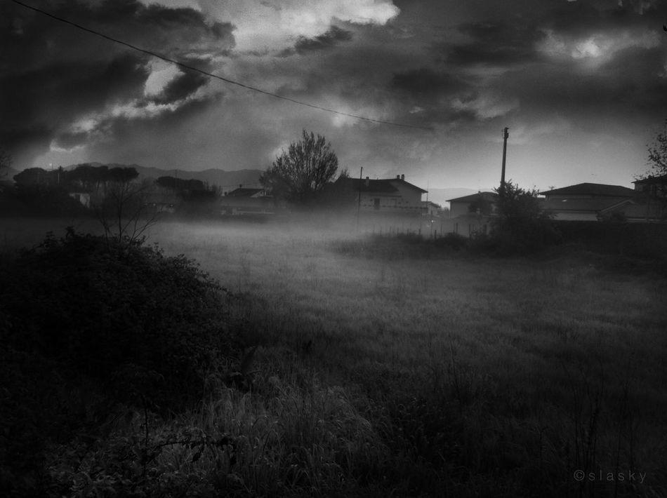 Blackandwhite Bw_collection Monochrome Landscape