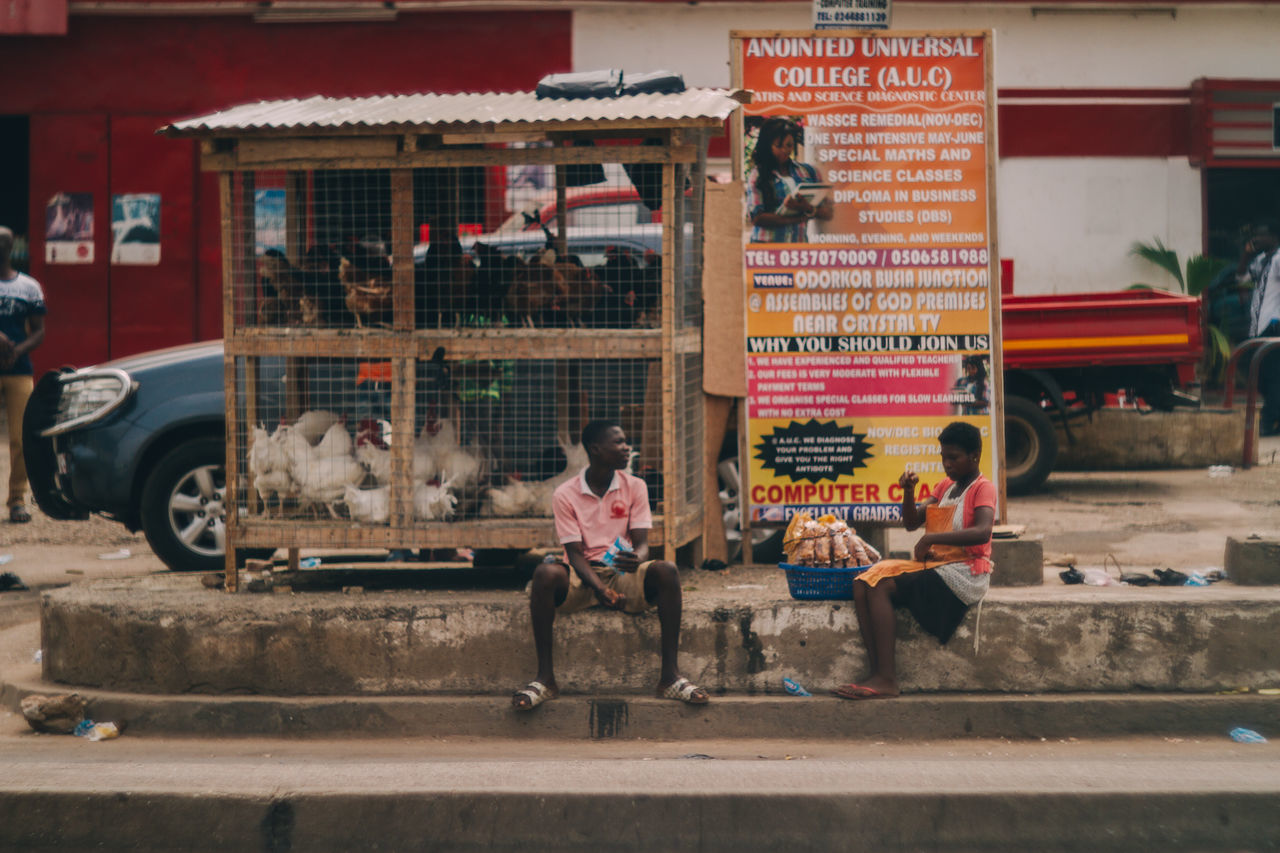 Africa Chicken Friendship Ghana Outdoors Selling Sitting On Sidewalk Small Business Talking Two People Waiting