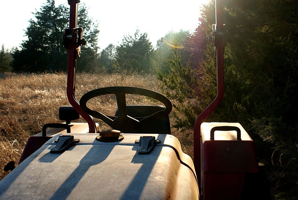My tractor out on the land, in the sunlight with long shadows, winter grasses, trees, in the afternoon light. Afternoon Light Day Farm Farm Equipment Field Golden Grasses Grasses Grasses And Sun Growth Nature No People Outdoors Rays Of Sunshine Rural Shadow Sky Sunlight Tree Winter