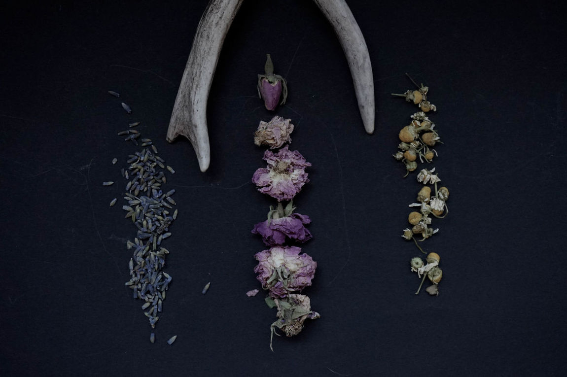 Antlers Black Background Botanical Chamomile Flower Fragility Herbal Herbalism Indoors  Lavender No People Photography Roses Studio Shot EyeEmNewHere