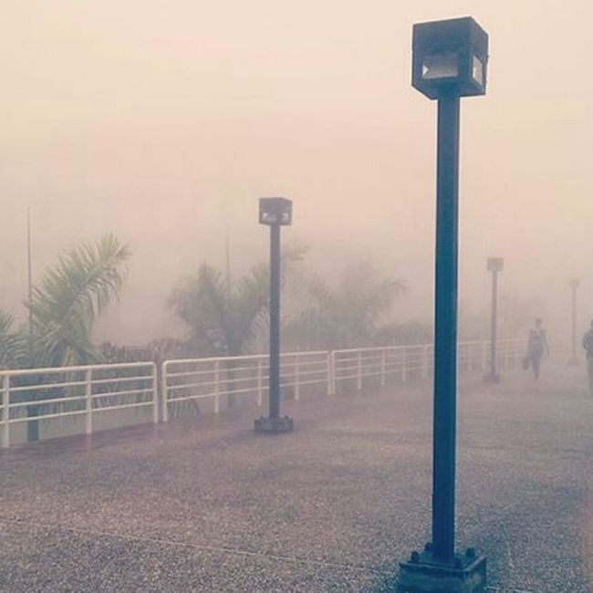 University Fog Neblina Cold Frio ⛄❄ Bridge Puente Lights Beatiful