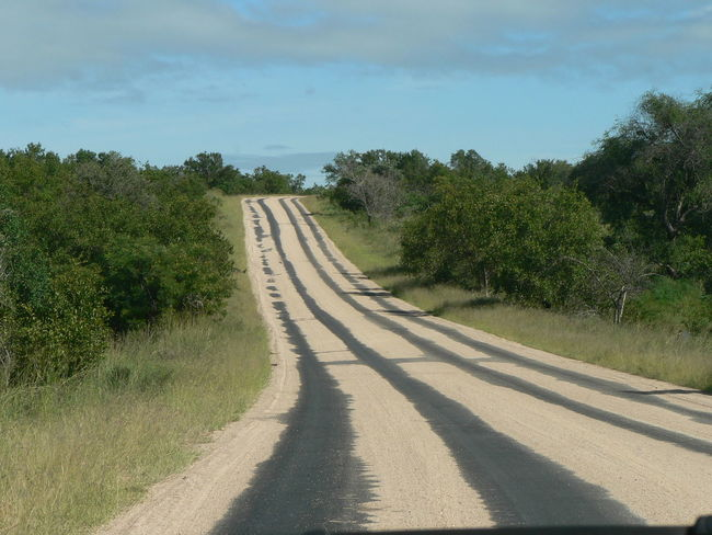 Kruger National Park, South Africa Transport Beauty In Nature Day Landscape Nature No People Outdoors Road Sand Scenics Tar Road The Way Forward Tranquil Scene Tranquility