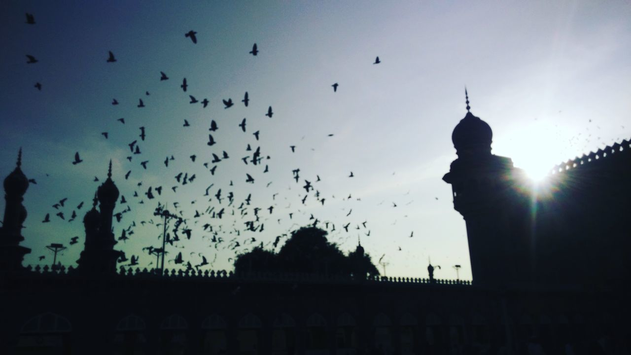 Skyporn Cloud - Sky MIphotography Incredibleindia Beautifulindia Day Sun Nature Architecture Flying Sky Flock Of Birds Building Exterior Wanderersoul Hyderabaddiaries MeccaMasjid Hyderabadcity Traveldiaries✈🌍 Indianheritage