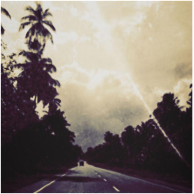 Asia SriLanka Colombo Route Road Ontheroad Forest Ray Rayon Gilgiuglio photo-tourisme.com