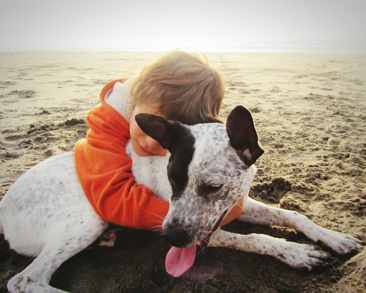beach, dog, sea, pets, domestic animals, sand, animal themes, one animal, horizon over water, shore, mammal, outdoors, day, nature, standing, one person, real people, water, sky, people