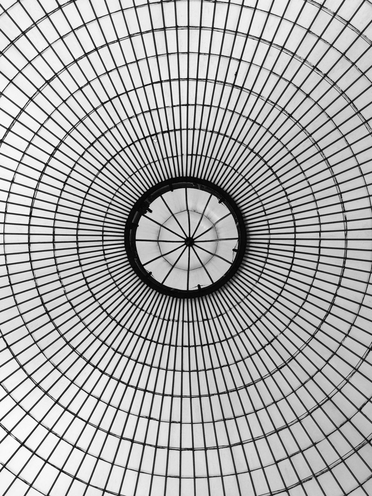 Looking up inside Kibble Palace, Glasgow Botanic Gardens, Scotland. Photo by Tom Bland. Architectural Architectural Design Architectural Feature Architecture Black And White Built Structure Ceiling Circle Circles Dome Geometric Glasgow  Glasshouse Graphic Indoors  IPhone IPhoneography Lines Looking Up Monochromatic Monochrome Pattern Shape Structure Up