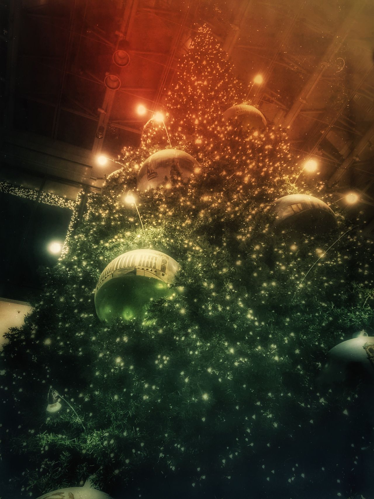 Christmas Tree Christmastime Christmas Decorations Christmas Around The World