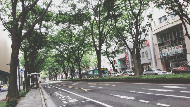 今日の青葉通です。Today's Aoba street Sendai.