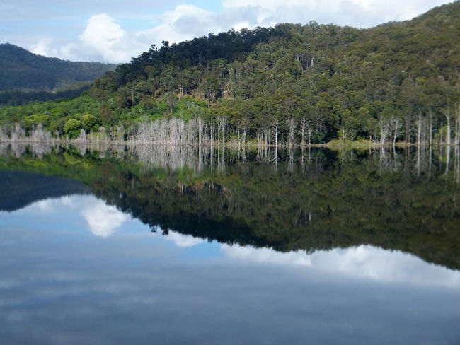 The upper intake of the Hinze dam on the Gold Coast Australia. Beauty In Nature Cloud - Sky Day Grass Growth Horizontal Lake Landscape Mountain Nature No People Outdoors Reflection Scenics Sky Tranquil Scene Tranquility Tree Water