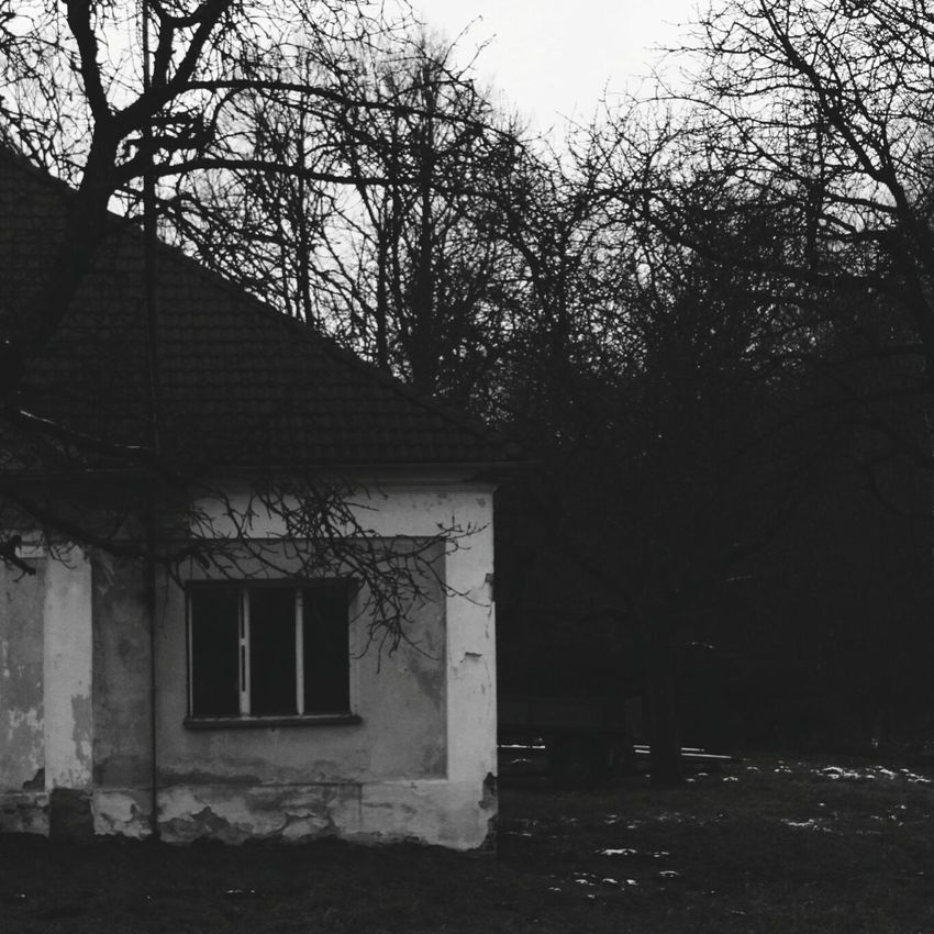 Blackandwhite Creepy Old House Scary Trees Forest The Dark Forest Canon600D Blackandwhite Photography Czech Republic