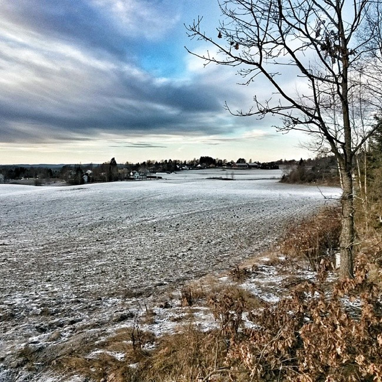 Ilovenorway Ilovenorway_akershus Follo   ås worldunion wu_norway winter frost skyline
