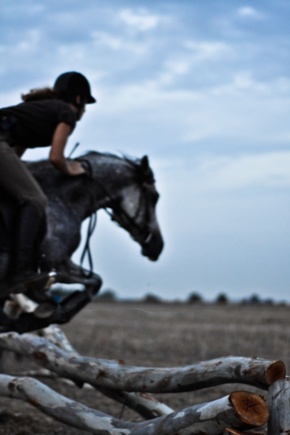 Cavalry Woman Farm Fast Moving Horse Jumping Horse Riding Knight  Rider Wooden Barriers Adventurr Time