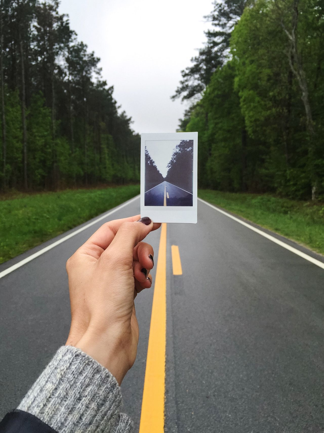 The Great Outdoors - 2015 EyeEm Awards EyeEm Best Shots Learn & Shoot: Layering Polaroid Road Ontheroad Trees Nature On Your Doorstep Check This Out Hanging Out Market Bestsellers May 2016 Bestsellers