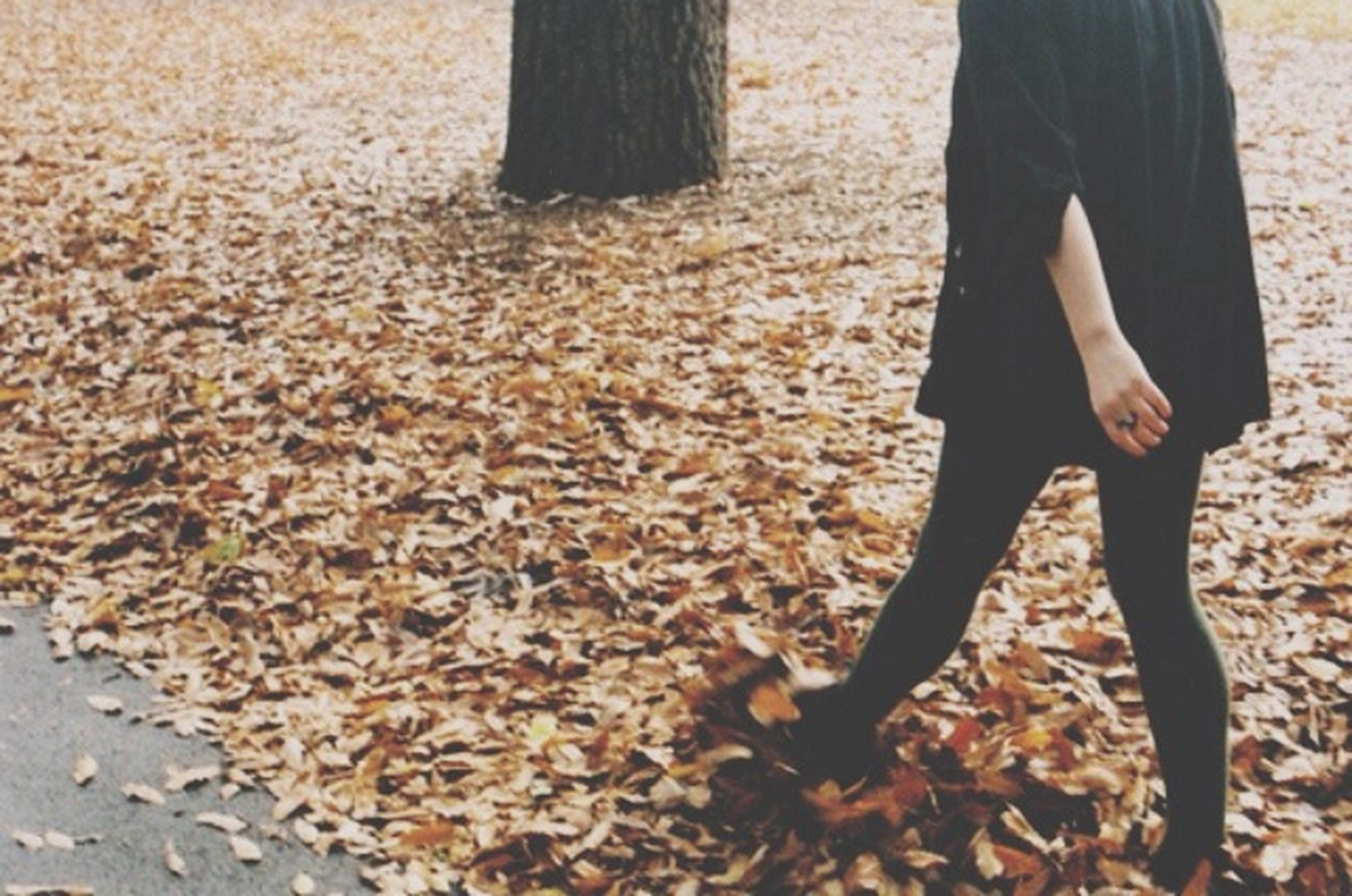 low section, person, lifestyles, standing, leisure activity, autumn, dry, leaf, human foot, season, day, field, shoe, outdoors, fallen, part of