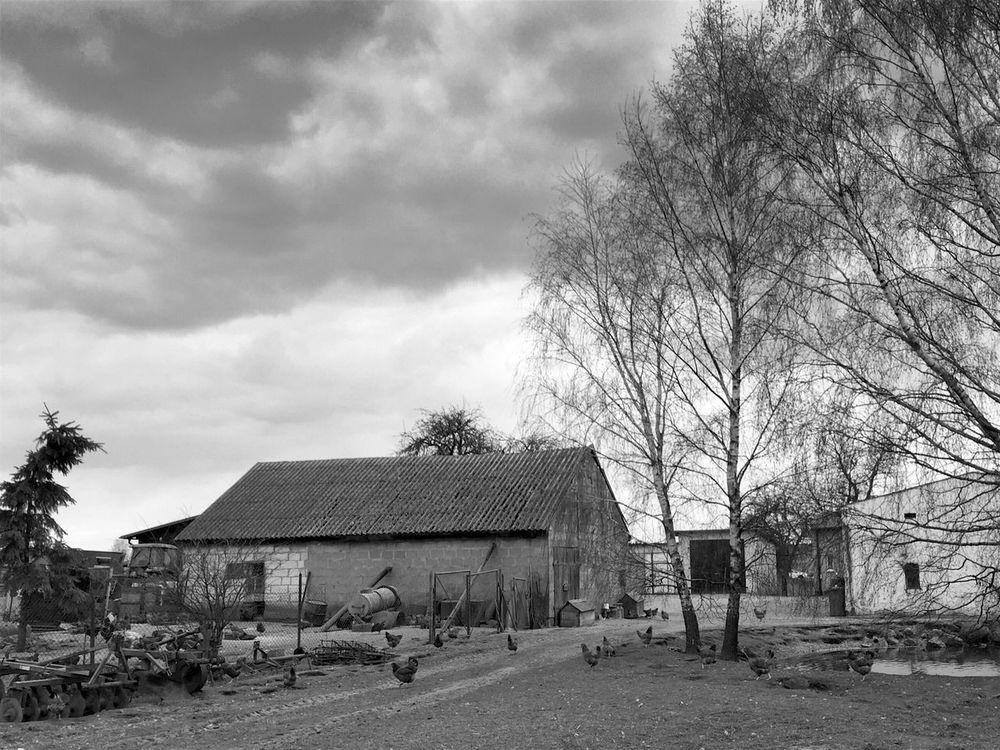 Lost In Suburbia ( Monochrome ) - Gdynia 7 April 2016 ( IPhone 6+ ) IPhoneography Iphone 6 Plus Bnwphotography Bnw_society Bnw Bnw_zone Bnw_worldwide Bnw_maniac Bnw_collection Bnw_captures Gdynia Poland Wiczlino Rural Scene Rural EyeEm Masterclass EyeEmBestPics Landscape_Collection EyeEm Best Edits EyeEm Gallery EyeEm Best Shots