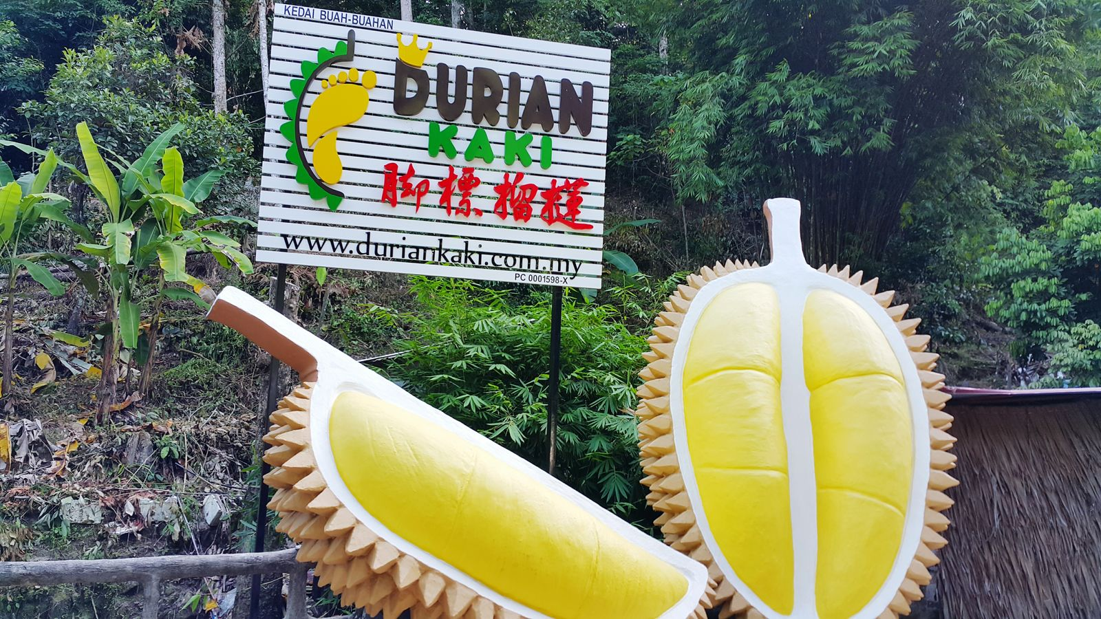 Durian Fruit Durian Fiesta Durians Shop Unique Architecture Naturephotography Green Color Outdoors Giant Structure Beautiful Colors Man Made Object