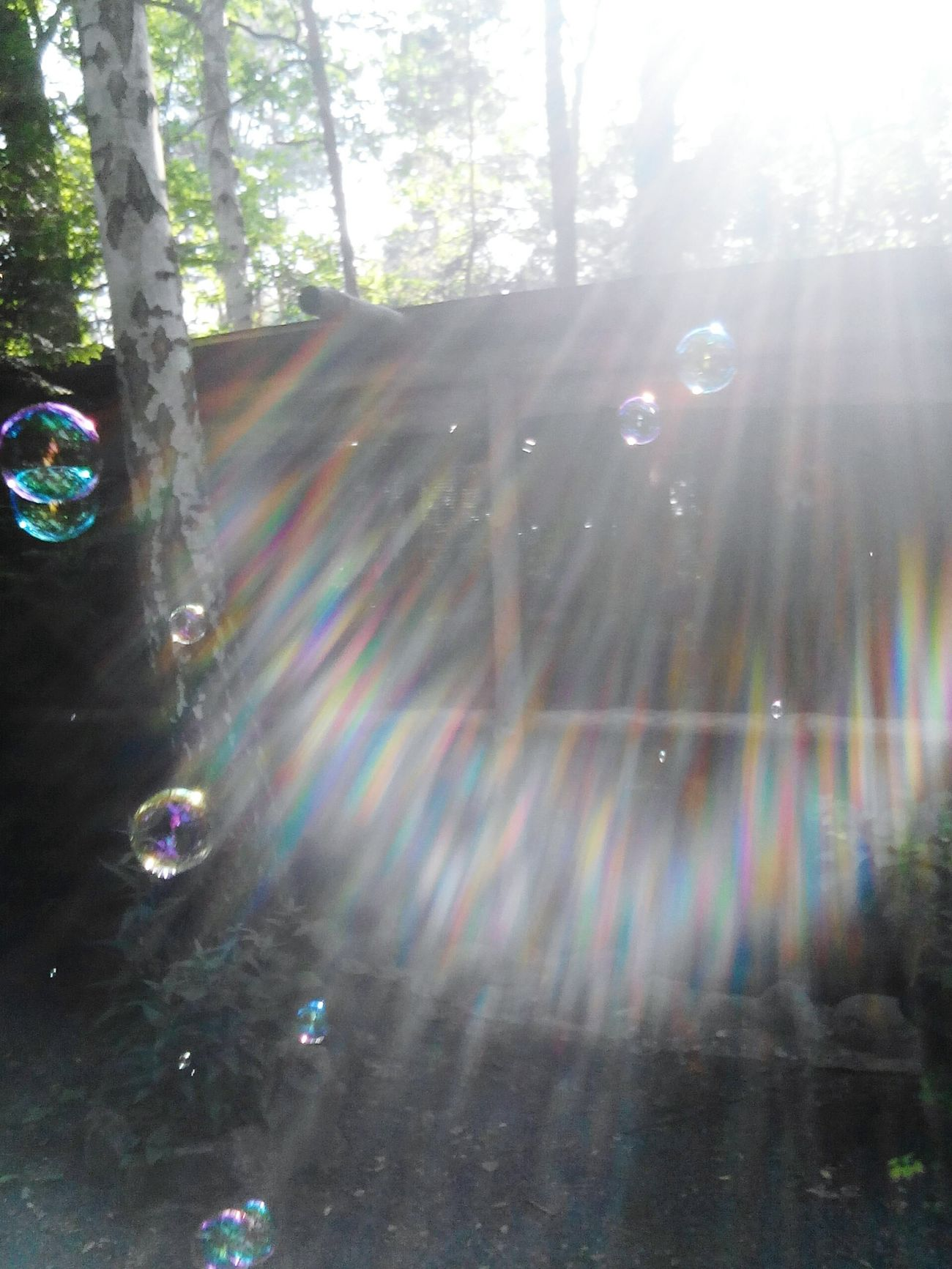 Pretty♡ Summer Memories 🌄 Summer Views Summer2016 Love To Take Photos ❤ Paradise On Earth Outside Photography Summer ☀ Summertime ♥ Lovely Day Hello World Colorful Nature Lovely Weather Summer Weather > 😚 Sunny Day 🌞 Soapbubbles Soap Bubbles 💖 Soap Bubble#summer#sunshine