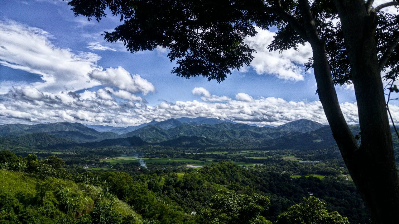 landscape, nature, mountain, tree, sky, no people, forest, day, beauty in nature, outdoors, range