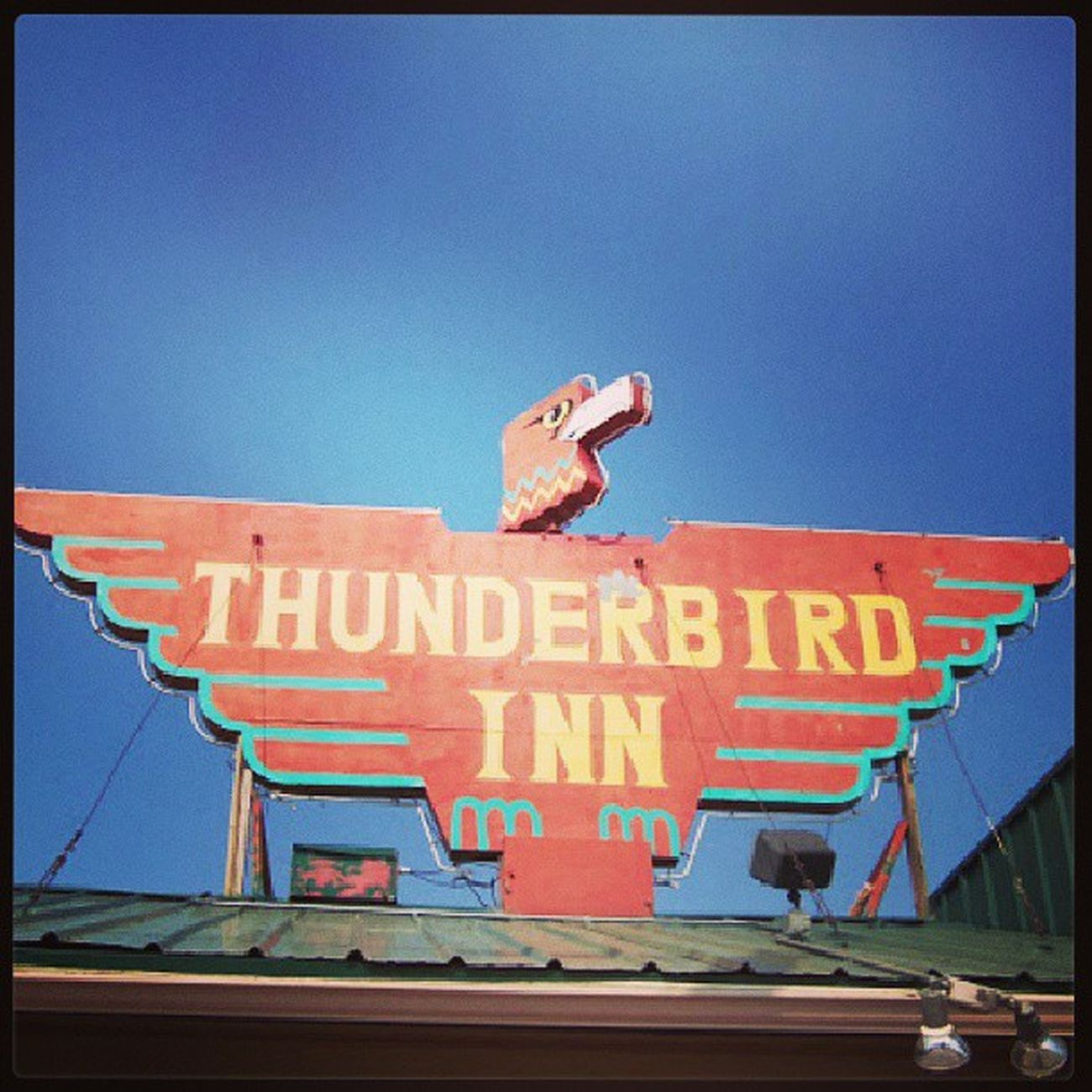 Streetphotography Signage Colorado Roadtrip Typography Neon Sign Nostalgic  Motel Photooftheday Lettering Thunderbird Signgeeks Almaproject Streetalma Vintagesigns Signstalkers Lettergetter Vintageneon Oldneon Photographyalma