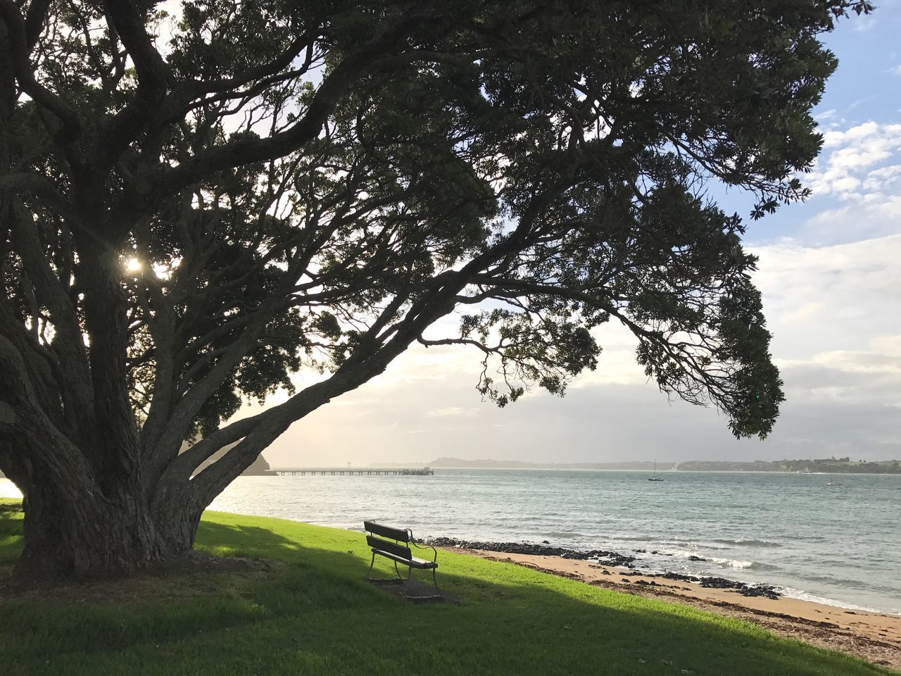 Light And Shadow Freshair Freedom Ocean View Beauty In Nature Beach Sea Tree Nature Scenics Tranquility Grass Day Sky Sunlight Cloud Outdoors Landscape Fresh Scent Bench Ocean Windy