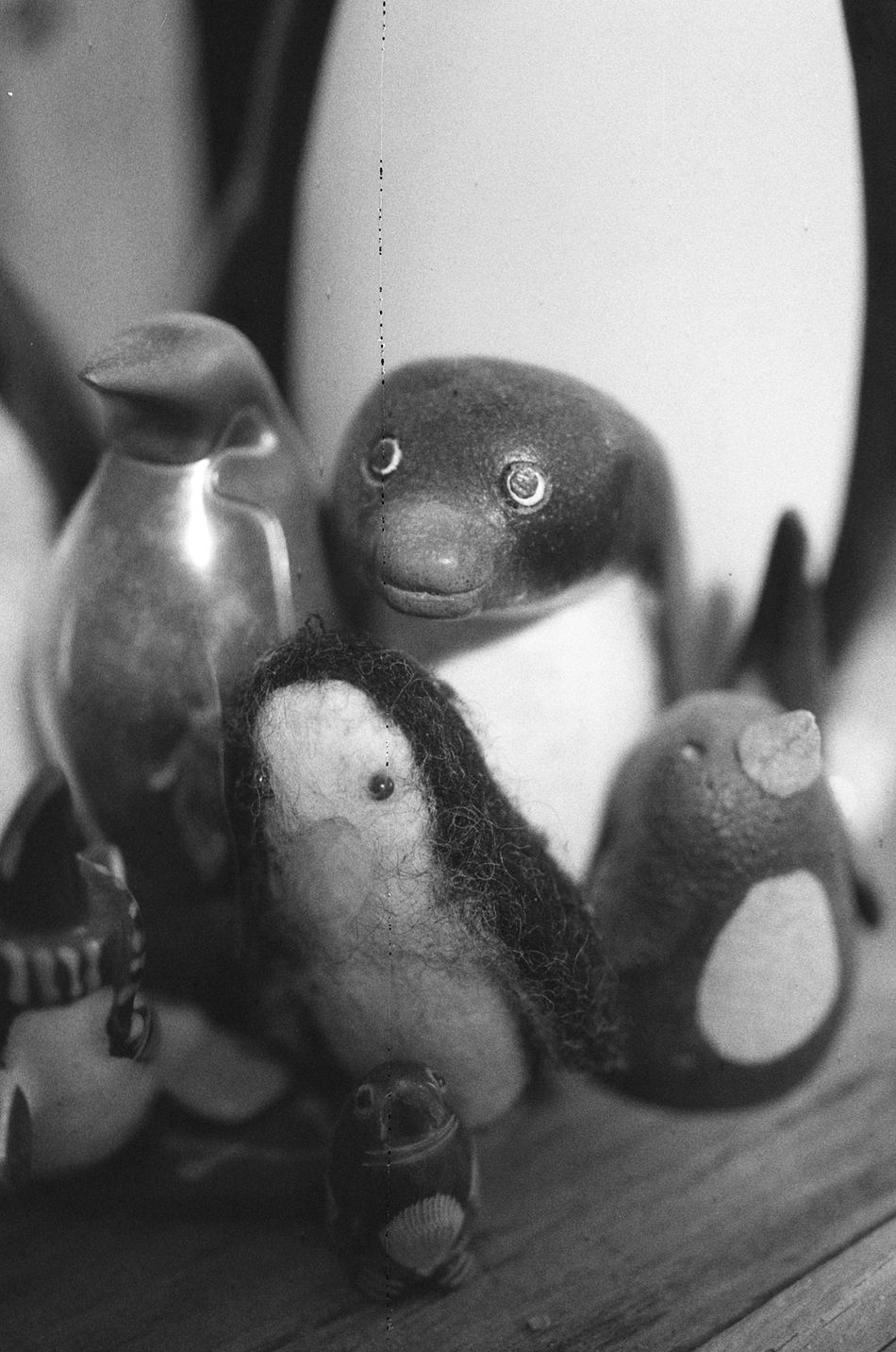Animal Representation Animal Themes Black And White Blackandwhite Blackandwhite Photography Canon EOS 500N Close-up Film Is Not Dead Film Photography Filmisnotdead Filmphotography Indoors  Ishootfilm Lucky Film No People Penguin Penguins Stuffed Toy