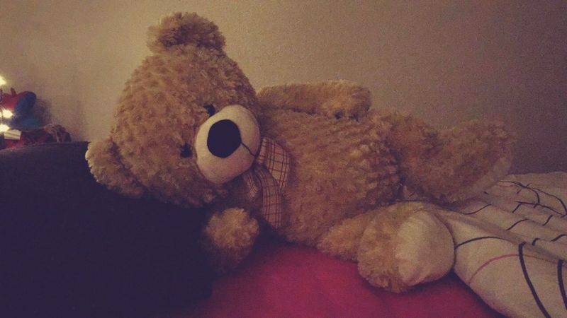 Teddybear ❤️ Check This Out Taking Photos Taking Pictures Photography Photo Hello World Relaxing Beautiful Light And Shadow Creative Light And Shadow