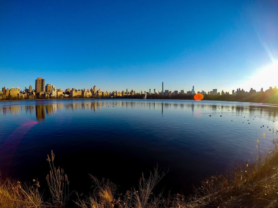 Gopro Goprohero4 New York New York City Central Park Central Park - NYC Nicola Nelli Picture Picoftheday Grandangolo Goprooftheday CentralPark