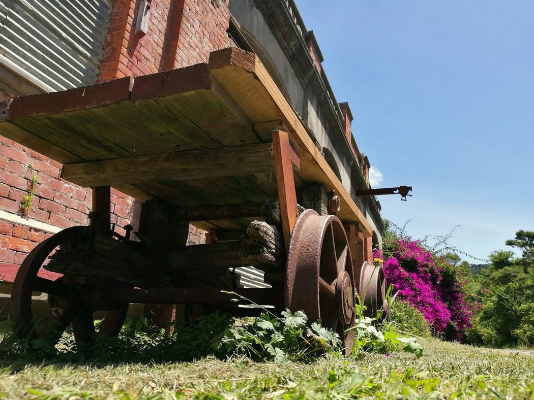 Old Buildings Built Structure Architecture Building Exterior Wheel Cart Grass Sky Sunlight Outdoors Day No People Flower NZ Abandoned Vintage Redundant New Zealand