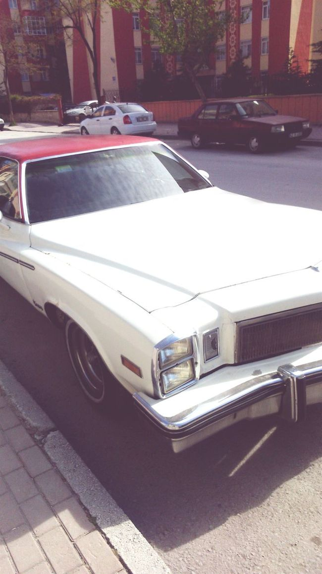 Car Impala67 Sunny Day