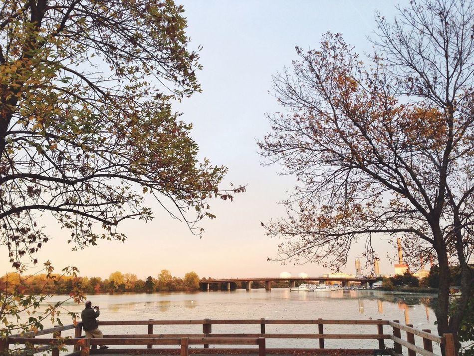Beautiful stock photos of river, Branch, Bridge, Incidental People, Outdoors