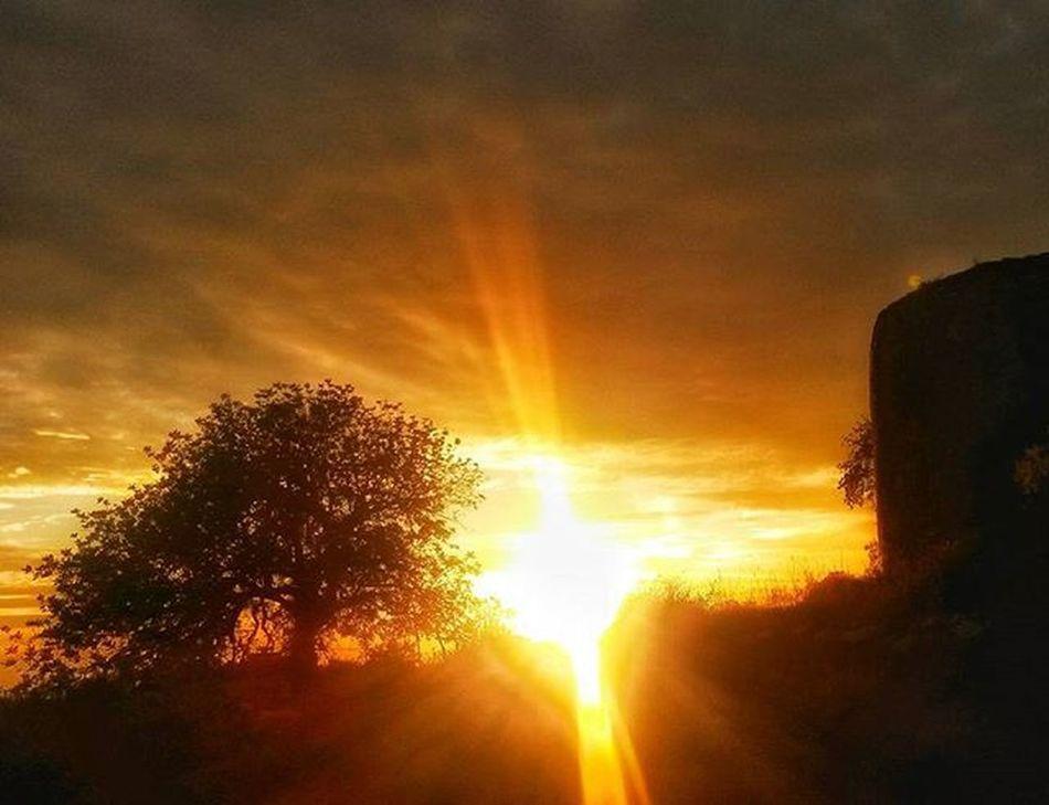 Loooovee this! Rsa_nature Rsa_landscape Rsa_sunset Super_algarve Amaralgarve Ig_algarve_ Sun Sunset Beautiful Colors Art Insatgood Instalike Explore Exploretocreate Inspiration Nature Naturelovers Picoftheday Photooftheday