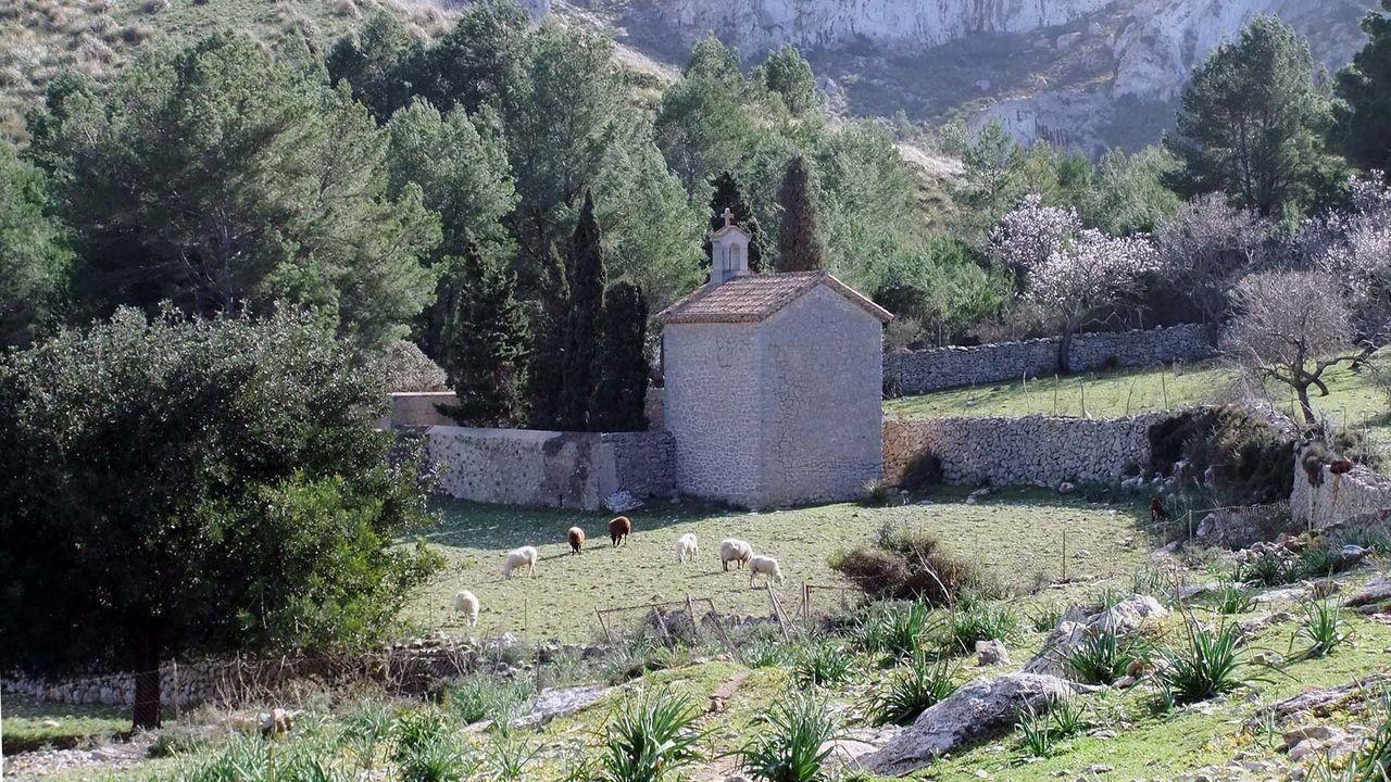 Ermita de Betlem Agriculture Baleares Built Structure Cloister Garden Green Color Island Mallorca Mediterranean  Monastery Old Scenics Sheep SPAIN