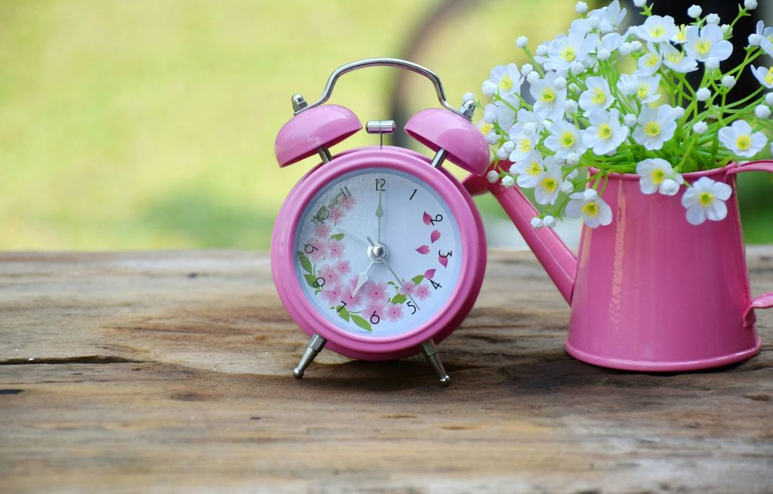 Alarm clock and white flowers in vase. Alarm Alarm Clock Clock Pink White Flowers Home Decoration Vase Room Table Flora Modern Flower Vases Decorative Houses Natural Interior Pink Color Pink Alarm Morning Garden Alarm Clocks Beautiful