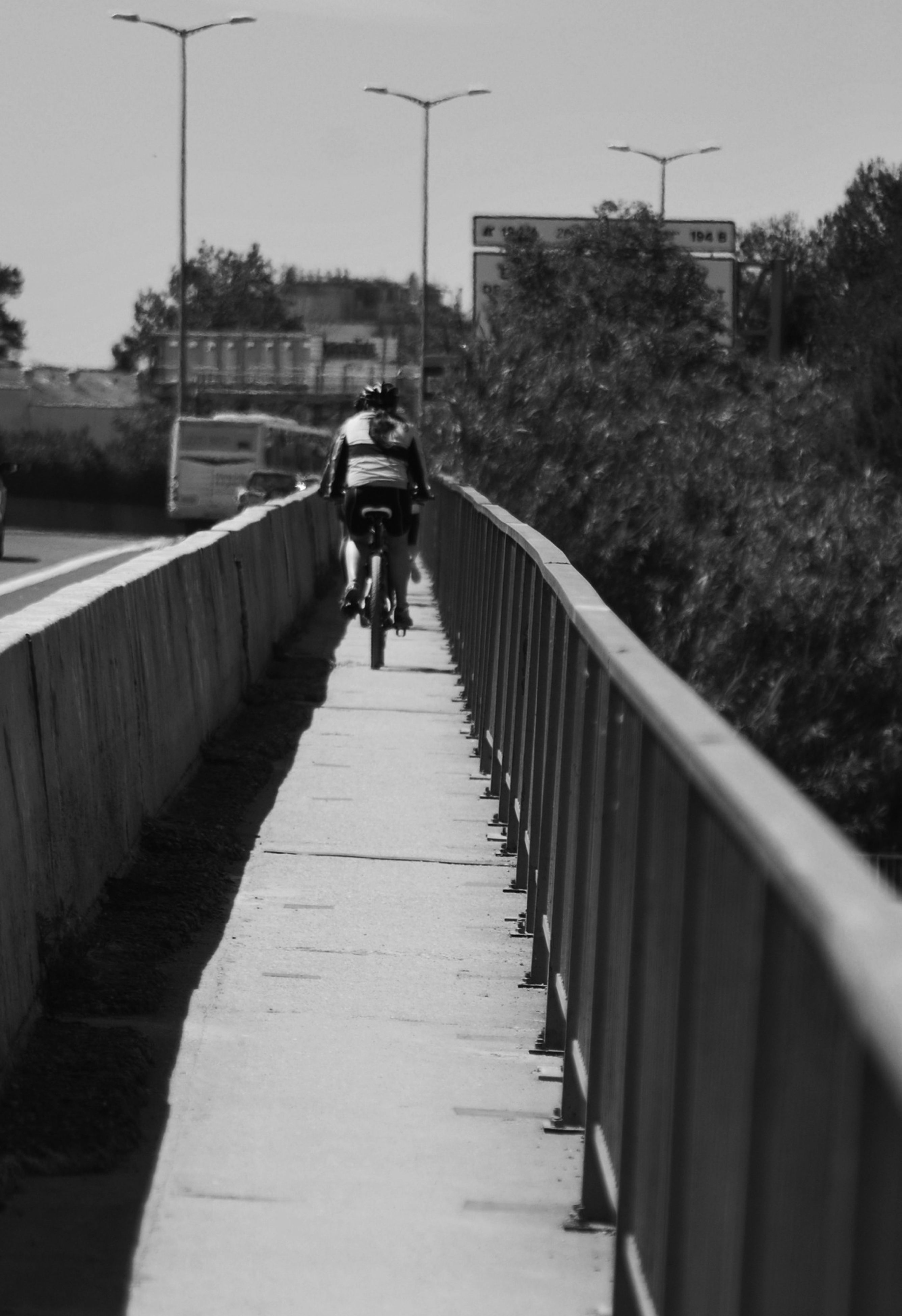 full length, the way forward, rear view, walking, lifestyles, men, leisure activity, transportation, diminishing perspective, bicycle, on the move, riding, railing, vanishing point, person, tree, casual clothing