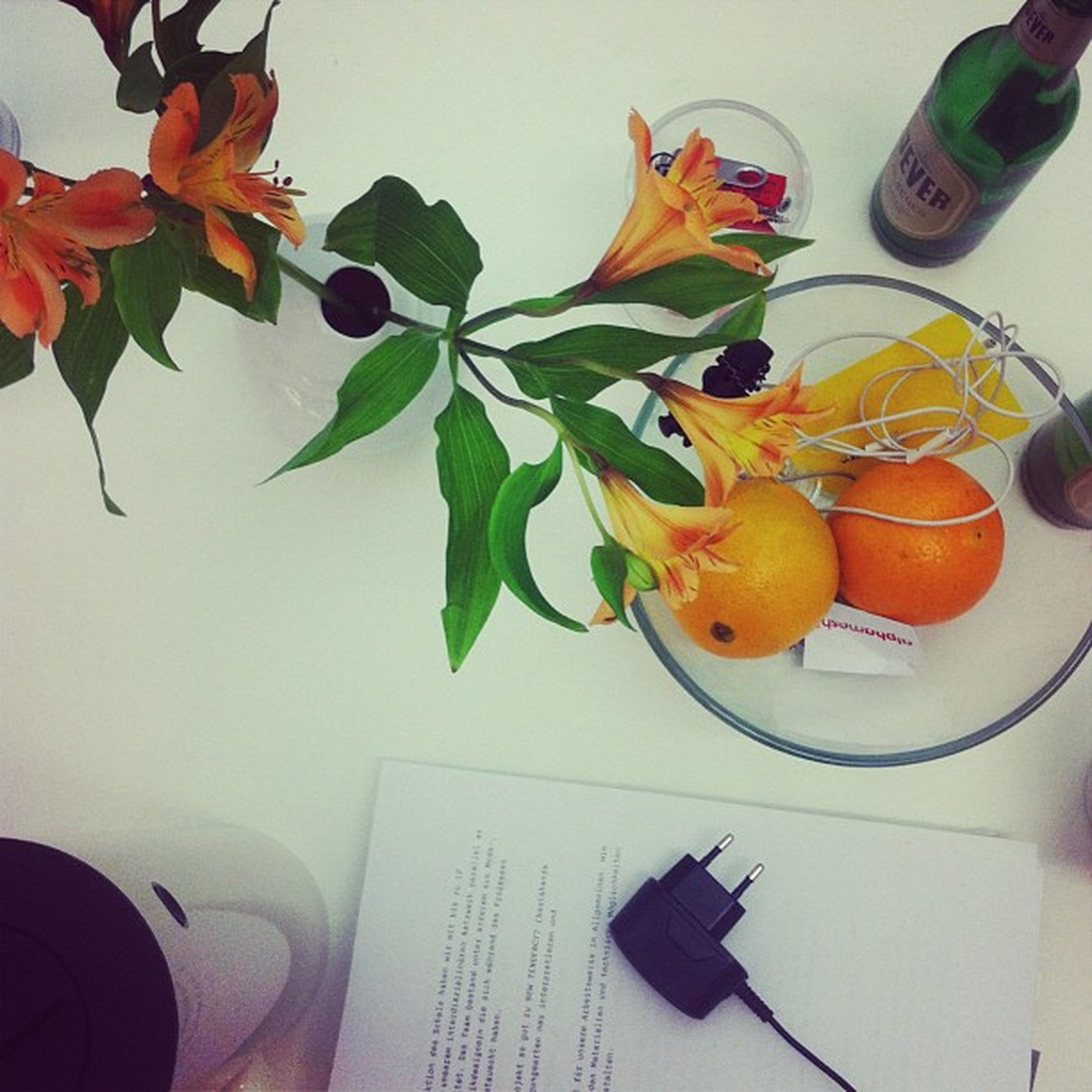 indoors, table, variation, freshness, multi colored, orange color, still life, flower, yellow, high angle view, leaf, vase, white background, close-up, paper, home interior, food and drink, wall - building feature, cropped, no people