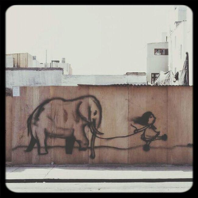 go with the elephant for a walk Hehe Soo Cute
