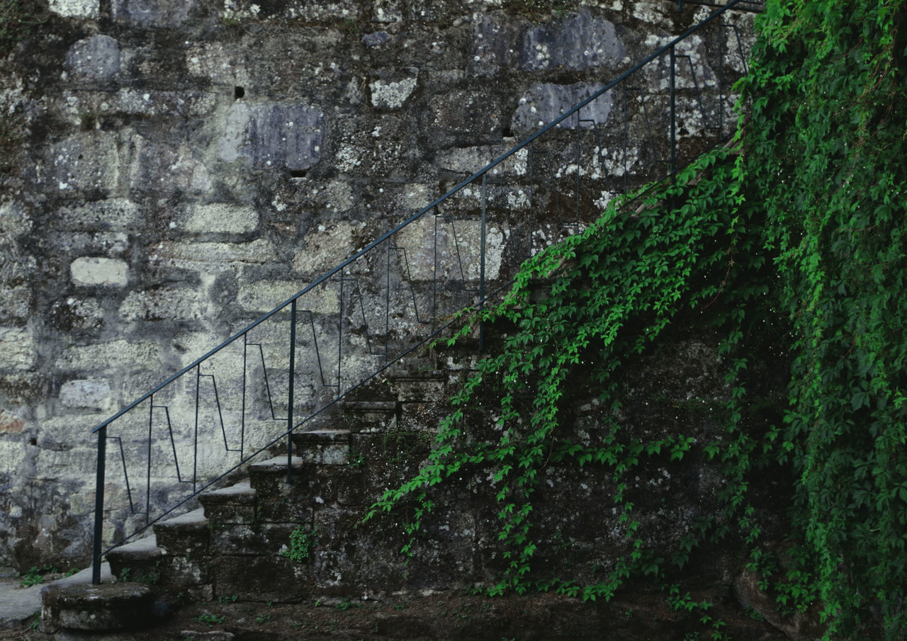Aqua Stairs, full of nature Nature Textures Stairs Photography Pentax K-50 Nature Photography Green Green Green!