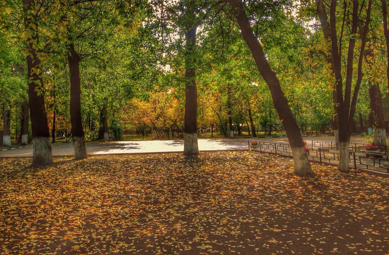 Осень же