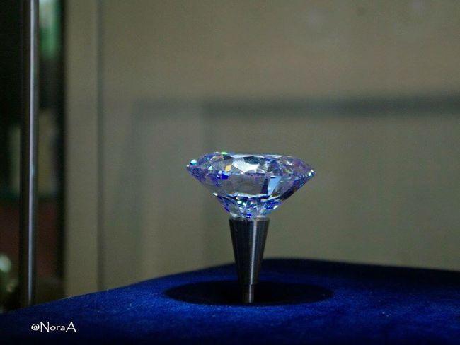 The girls' best friend Centieme Photo Art Diamonds Amsterdam Jewellery