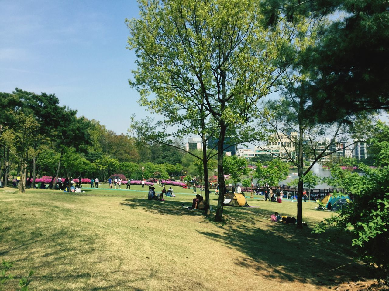At the PARK in Korea ;) 호수공원 First Eyeem Photo