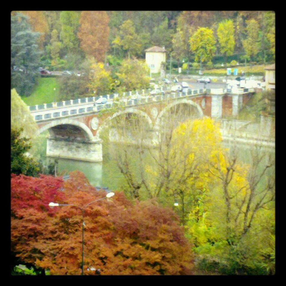 Nature Landscape Bridge Italy Taking Photos Enjoying The View Colors Photo Autumn Torino Landscapes Autumn Colors