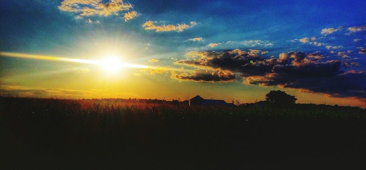 Colour Of Life Farmland Darkecounty Ohio Sunset Summer