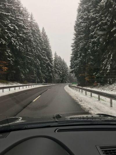Winter. Schneetreiben im Wald. first eyeem photo