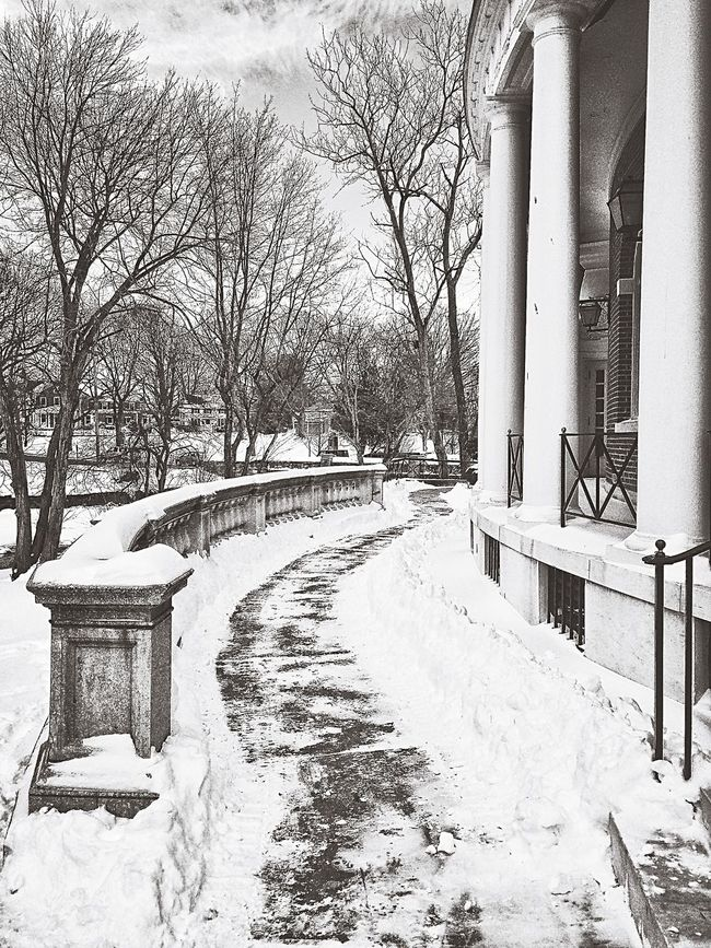 Milford town centre after the snow storm... Town Center Downtown January 2016 USA New England  Connecticut Winter Storm Snow Storm Storm After The Storm Milford Town Hall City Hall Blackandwhite Black & White Blackandwhite Photography