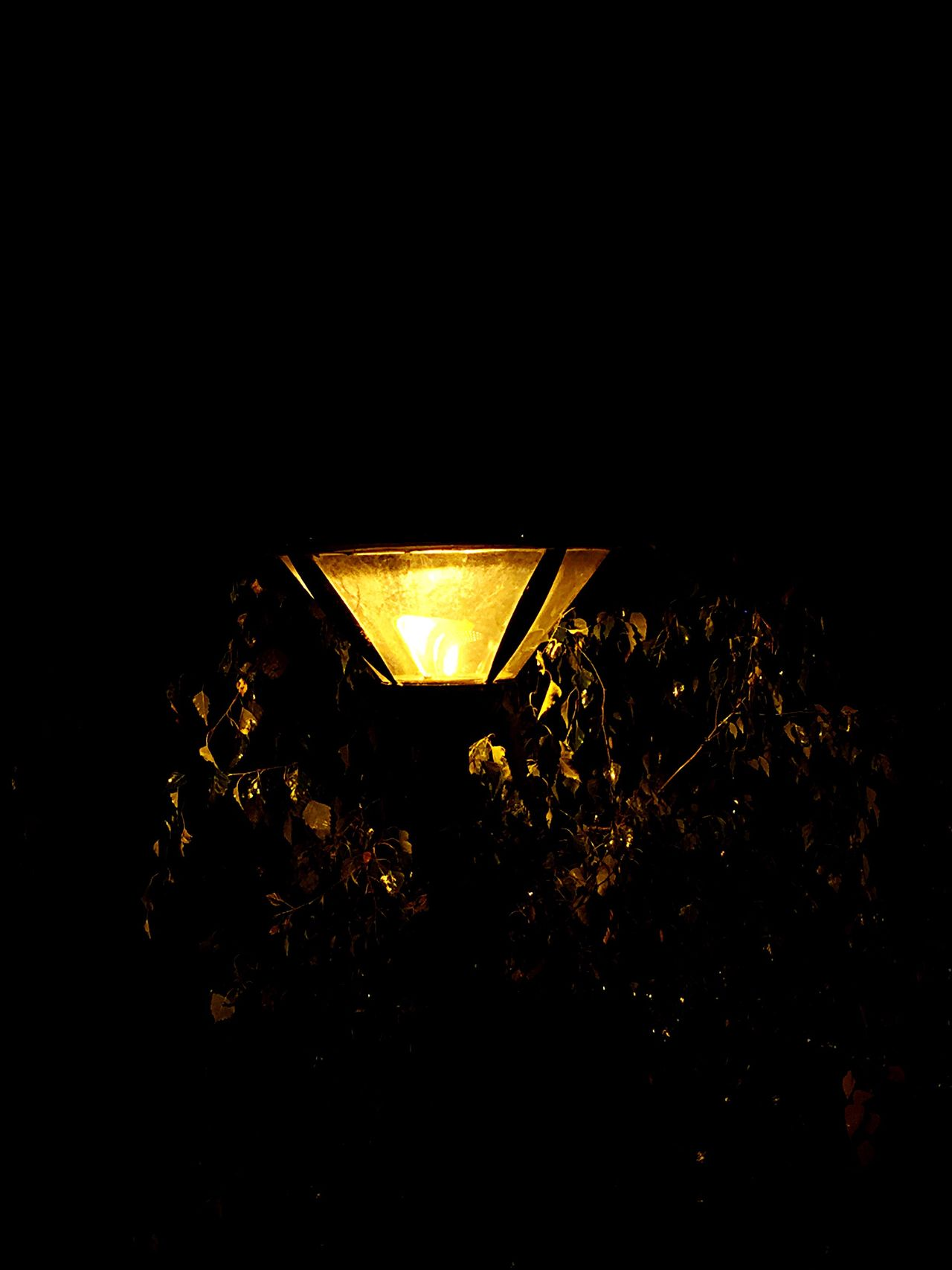 No People Illuminated Lighting Equipment Indoors  Nature Night Close-up