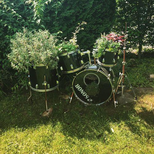 Nature wins Nature Garden Drums Drumkit Gardening Flowers
