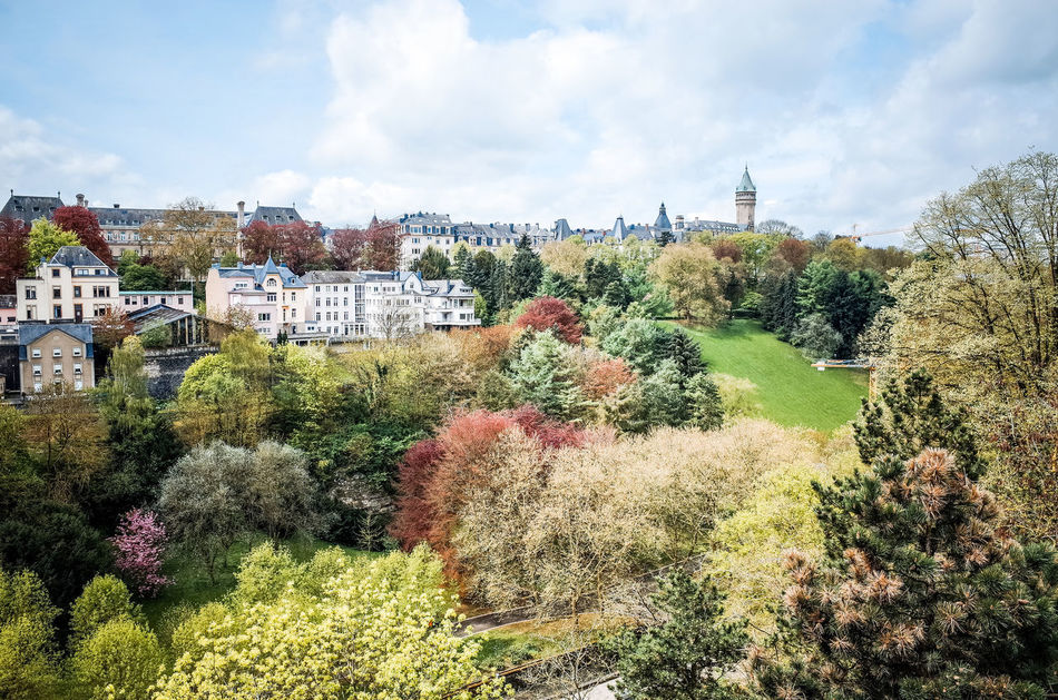Beautiful stock photos of luxemburg, Architecture, Branch, Building Exterior, Built Structure