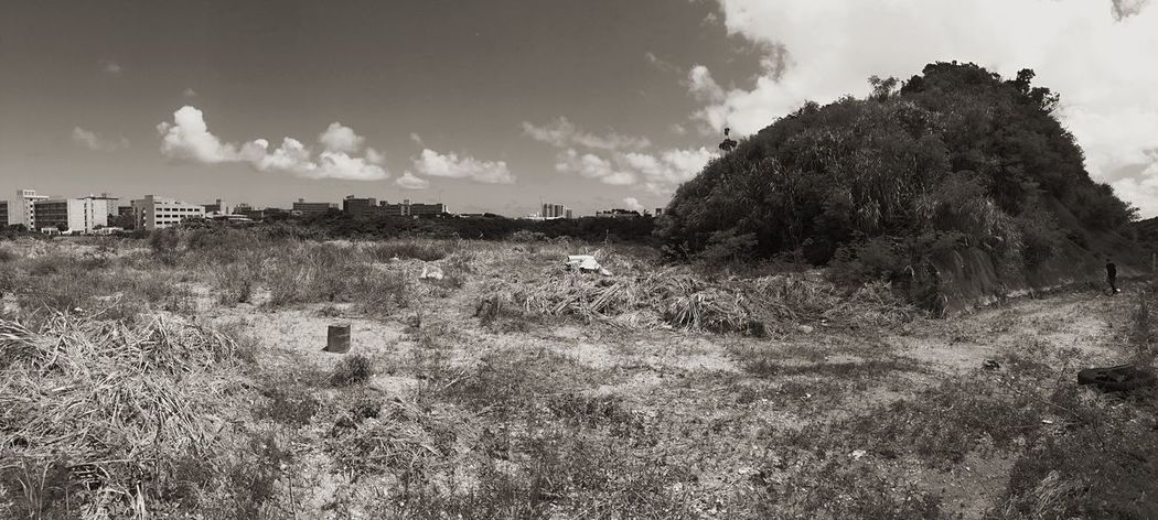 Blue Sky Nature Landscape Japan OKINAWA, JAPAN Landscape_photography Black & White War And Peace War Memorial 71years ago here a big battle was fought. Side by side, many killed each other, though, now in front of this calm scene, it's hard to imagine the horrible situation.