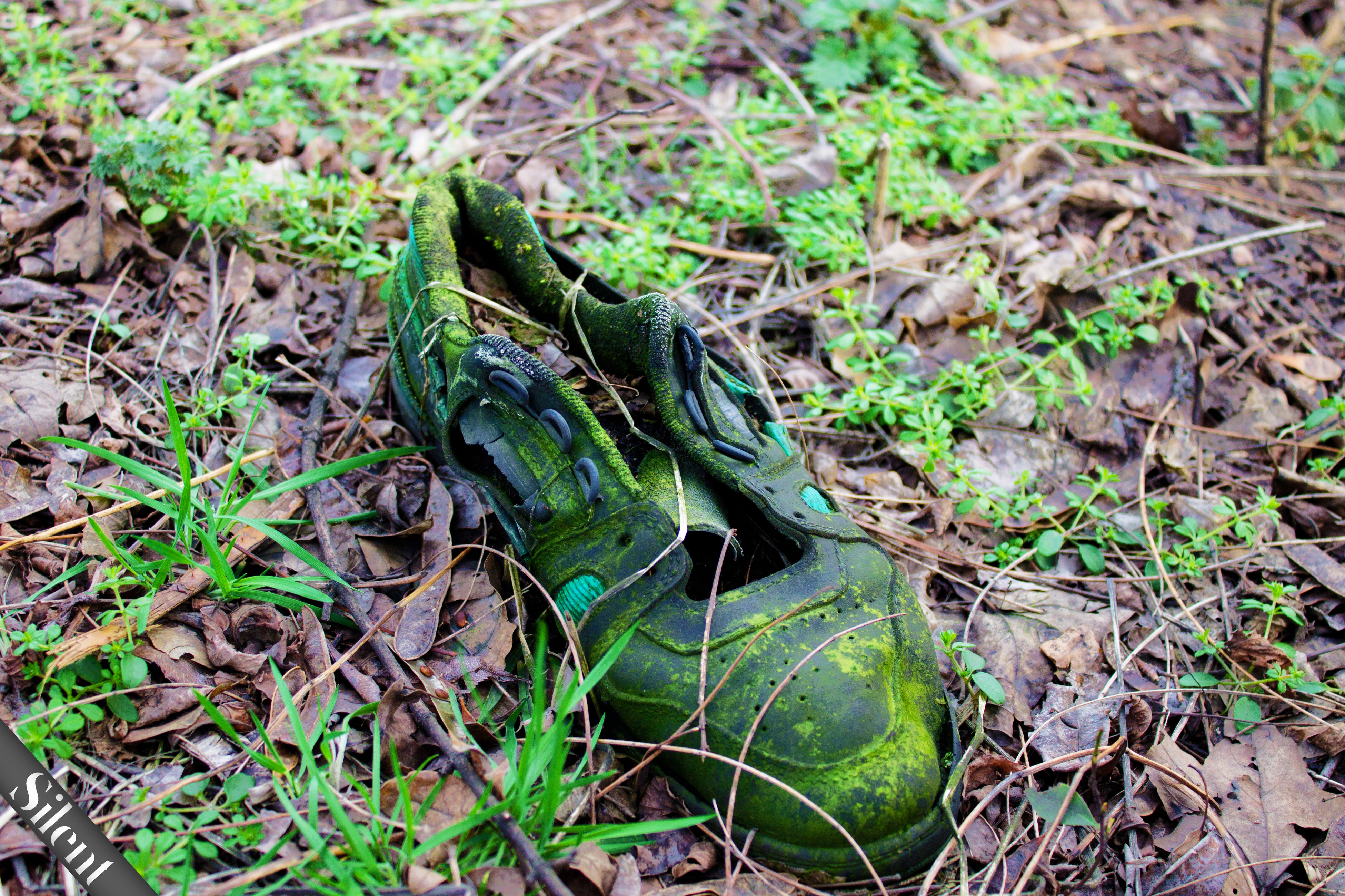 grass, high angle view, field, leaf, plant, abandoned, dry, dirt, nature, close-up, ground, day, outdoors, damaged, grassy, green color, messy, growth, no people, obsolete